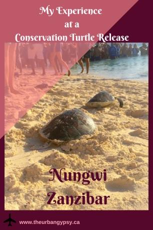 Copy of Zanzibar - first taste of paradise